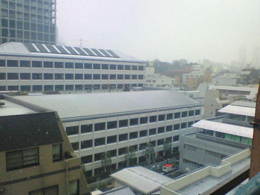 ホテルの窓から。